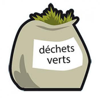 Collecte hebdomadaire des déchets végétaux